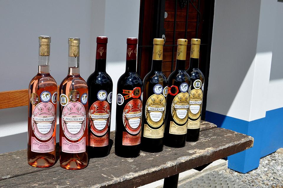 vína 2019